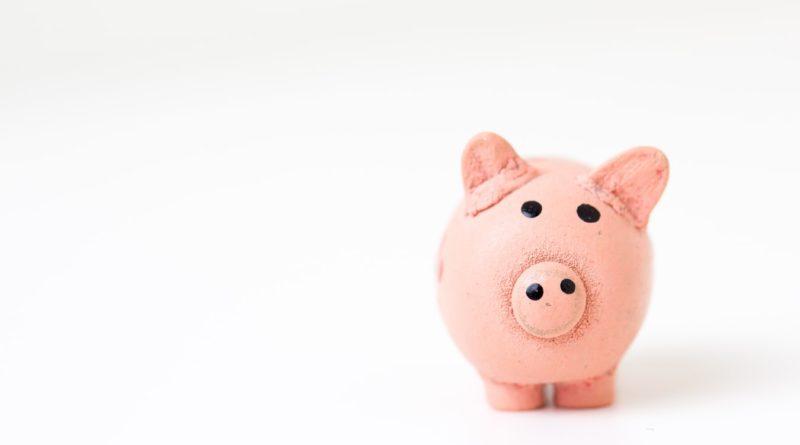 Le petit cochon rose pour les épargnes